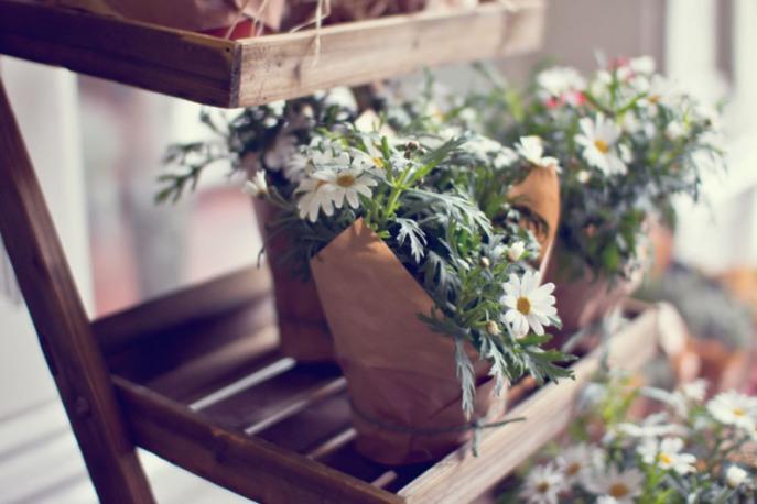 cardiff-forbesfield-flowers-034