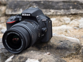 Nikon D5500: Complete coverage